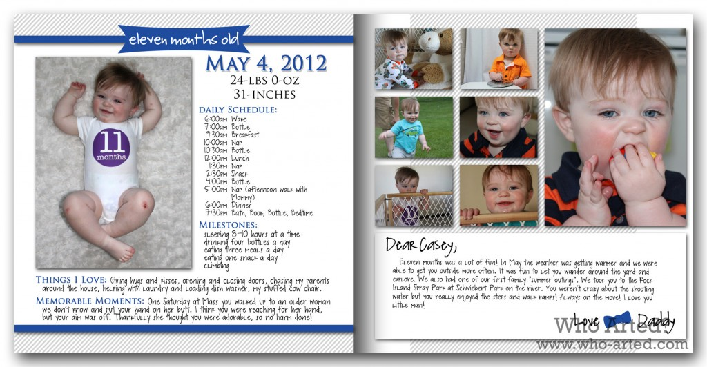 Baby Book Ideas Monthly Milestones